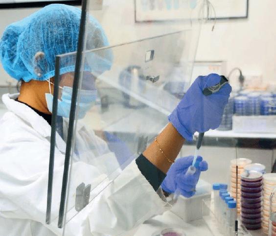 Microbilogical Testing